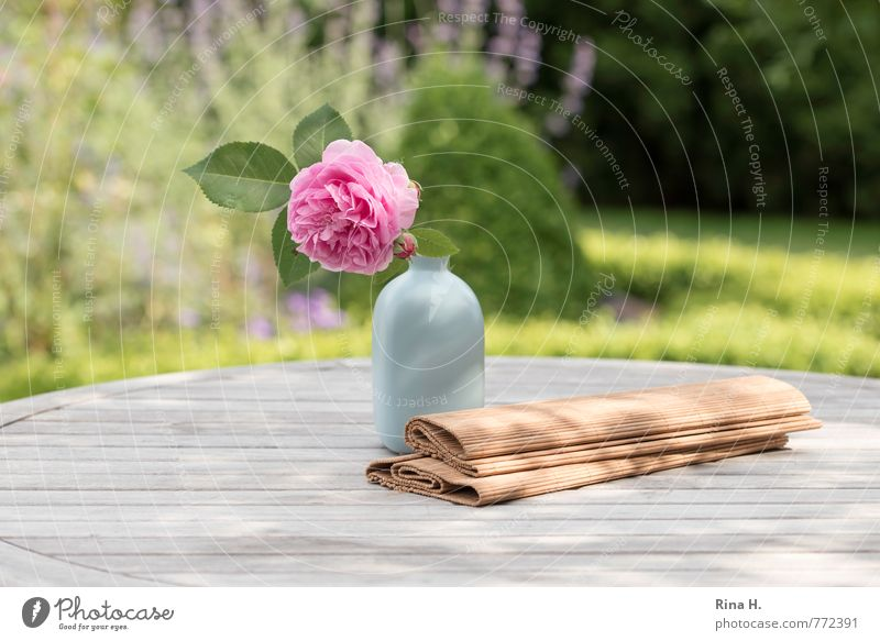 Summer Meadow Garden Blossoming Joie de vivre (Vitality) Rose Bouquet Still Life Vase Wooden table Table decoration Garden table