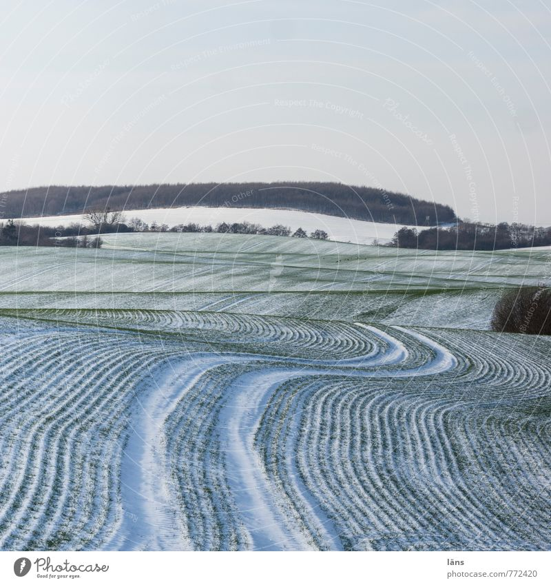 don't drink and drive Winter Snow Environment Nature Landscape Sky Ice Frost Field Cold Beginning Effort Tracks Line Stripe Colour photo Pattern