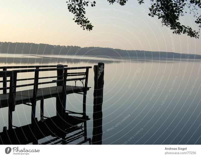 Nature Water Tree Summer Calm Leaf Cold Emotions Lake Fog Environment Fresh Romance Footbridge Jetty Painted