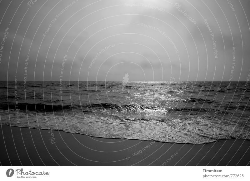 Vacation & Travel Water Emotions Coast Gray Glittering Power Waves Esthetic Large Simple Fluid North Sea White crest Denmark Black & white photo