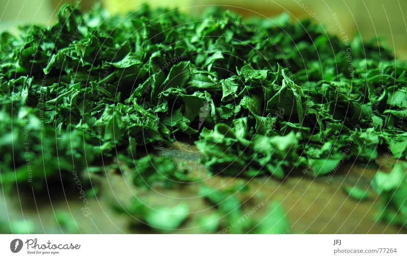parsley Parsley Green Herbs and spices Leaf Heap Chop Kitchen Cooking Close-up Nutrition Spicy