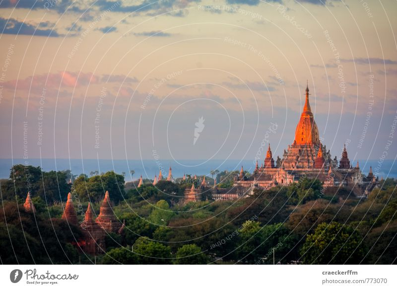 stupa Vacation & Travel Tourism Adventure Far-off places Sightseeing Culture Clouds Beautiful weather Forest Bagan Myanmar Deserted Stupa Esthetic Authentic