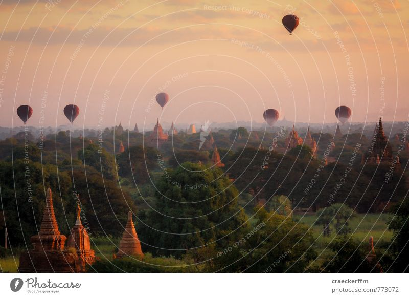 Vacation & Travel Summer Sun Far-off places Freedom Tourism Trip Adventure Tourist Attraction Hot Air Balloon Sightseeing Bagan Stupa