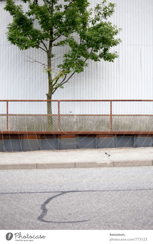 HH-Peute grown up. Industry Plant Tree Deserted Industrial plant Factory Wall (barrier) Wall (building) Facade Fence Street Lanes & trails Stone Concrete Metal