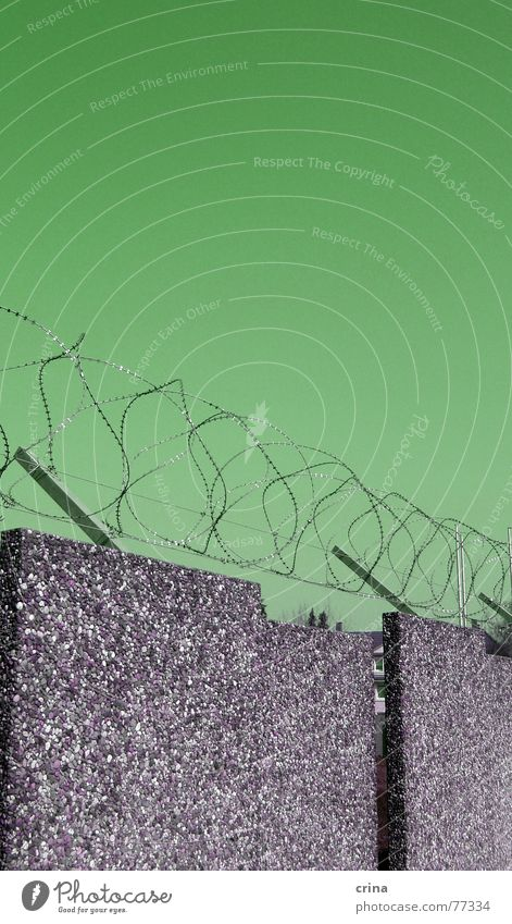 Green Wall (barrier) Metal Funny Concrete Pain Border Fence Bans Strange Hideous Barbed wire Offset