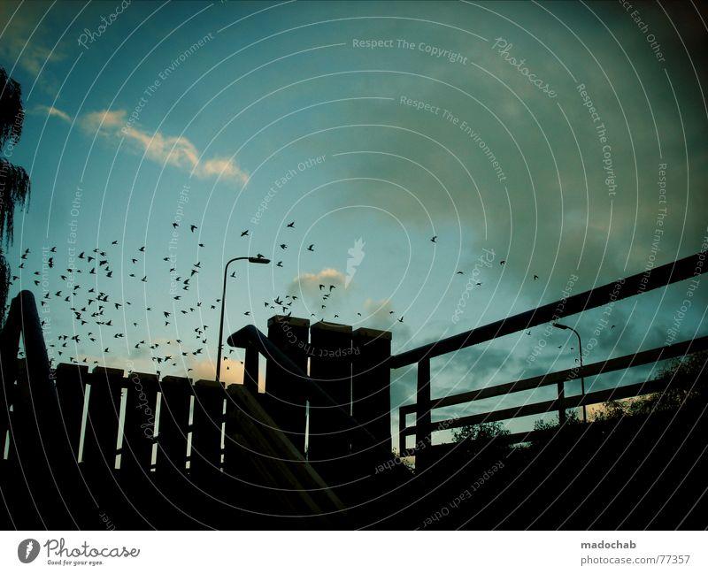 Sky Joy Lamp Moody Bird Stairs Bridge Normal Bits and pieces