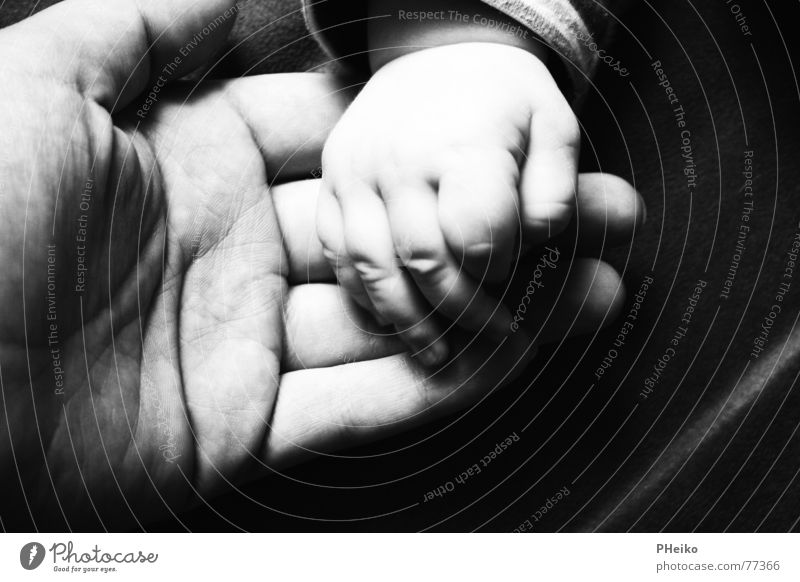 hand in hand Hand Safety (feeling of) Baby Fingers Father Mother Child Caresses Help Black & white photo dad Adults