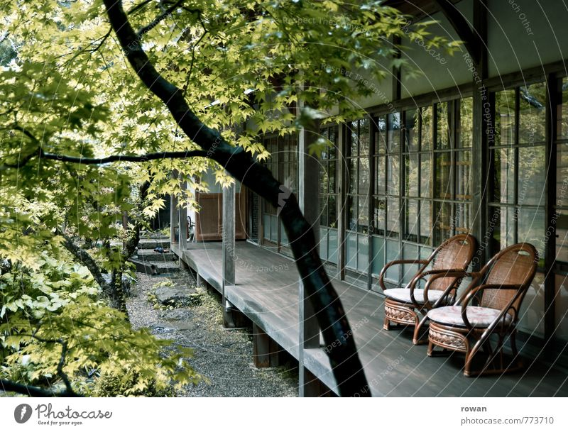 Green Tree Relaxation House (Residential Structure) Architecture Building Living or residing Sit Chair Manmade structures Terrace Interior courtyard Japanese