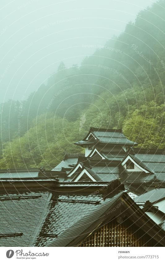 Tree Landscape Cold Forest Mountain Architecture Building Rock Rain Fog Multiple Wet Church Roof Mysterious Hill