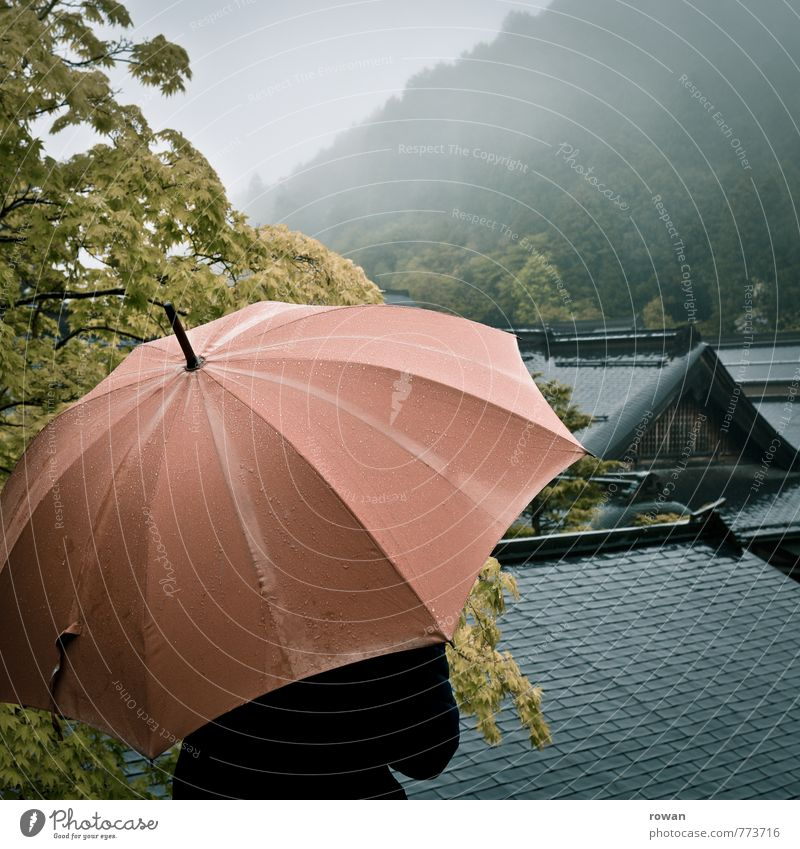 umbrella Human being Feminine Young woman Youth (Young adults) Woman Adults Bad weather Storm Fog Rain Tree Forest Hill Mountain Wet Umbrella Asia Japan Roof