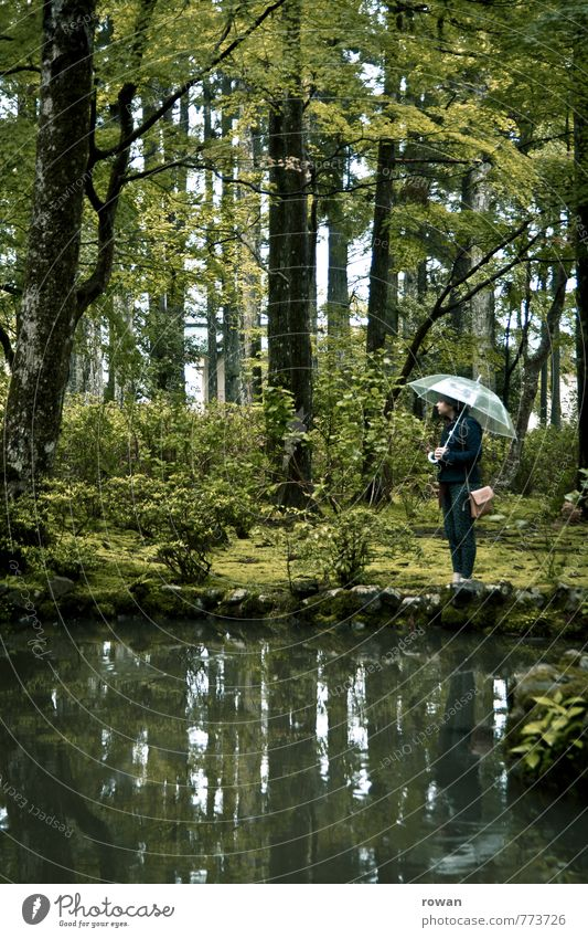 pond Human being Feminine Young woman Youth (Young adults) Woman Adults Bad weather Storm Rain Garden Park Forest Wet Reflection Umbrella Pond White Loneliness
