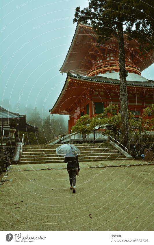 danjo guarantee Nature Bad weather Storm Fog Rain Tree Exotic Pagoda Temple Japan Umbrella Romance Religion and faith Buddhism To go for a walk Tourism