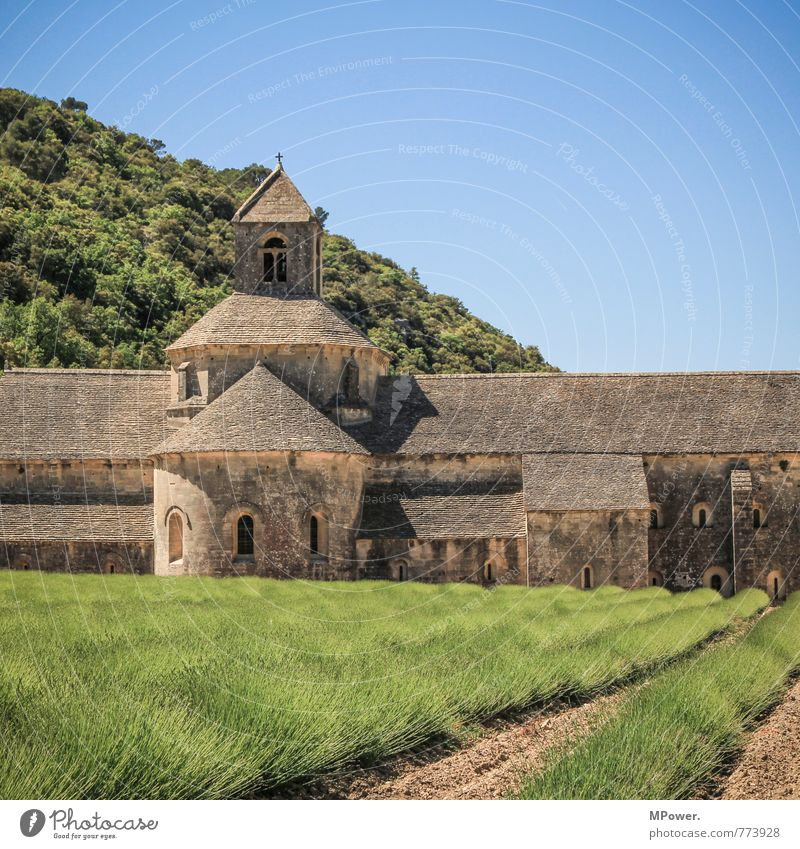 Abbaye de Sènanque Nature Sky Cloudless sky Beautiful weather Meadow Field Mountain Manmade structures Building Architecture Tourist Attraction Landmark