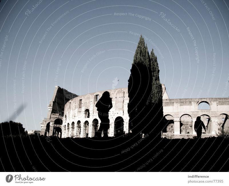 Colosseum Rome Italy Novel Human being tree shadows building historical ancient walking
