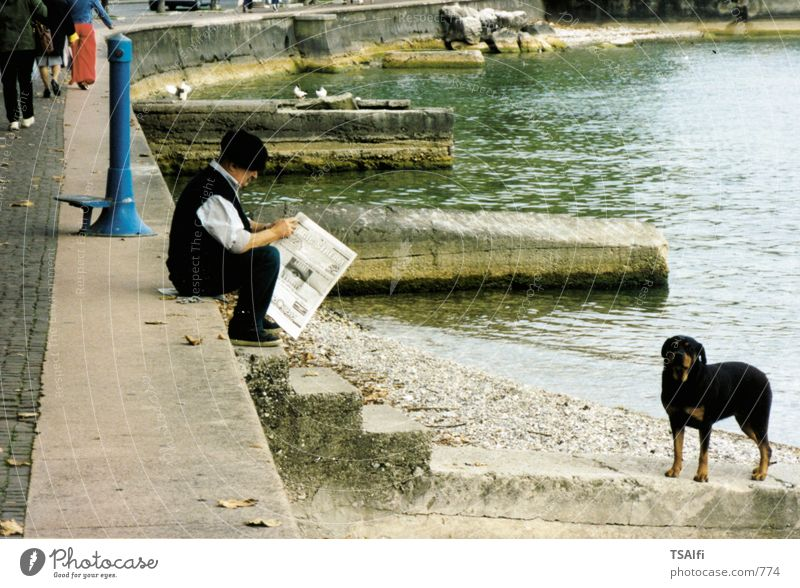 Man Dog Newspaper Photographic technology