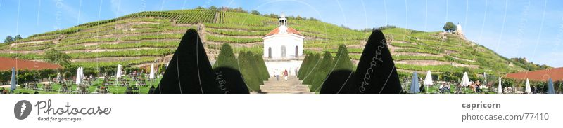 Court view Wackerbarth Castle Panorama (View) Vineyard Culture Exterior shot Radebeul brave art courtyard view Large Panorama (Format)