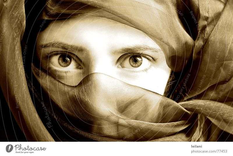 Arabic Vail Arabia Woman Eyes Sepia Looking Contrast