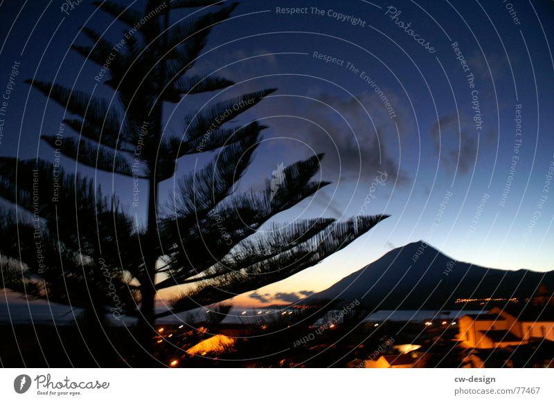 it's time for ... Pico Hawk Islands Ponta do Pico Sunset Lava Stone Dusk Azores Evening Water Hill Back-light Twilight Sunrise Tree Town Village Ocean Coast