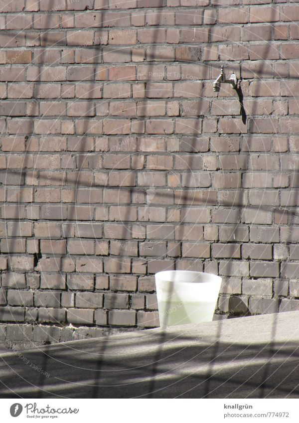 VALUABLE House (Residential Structure) Wall (barrier) Wall (building) Tap Bucket Hoarding Fluid Brown Gray White Life Protection Survive Environment Value Water