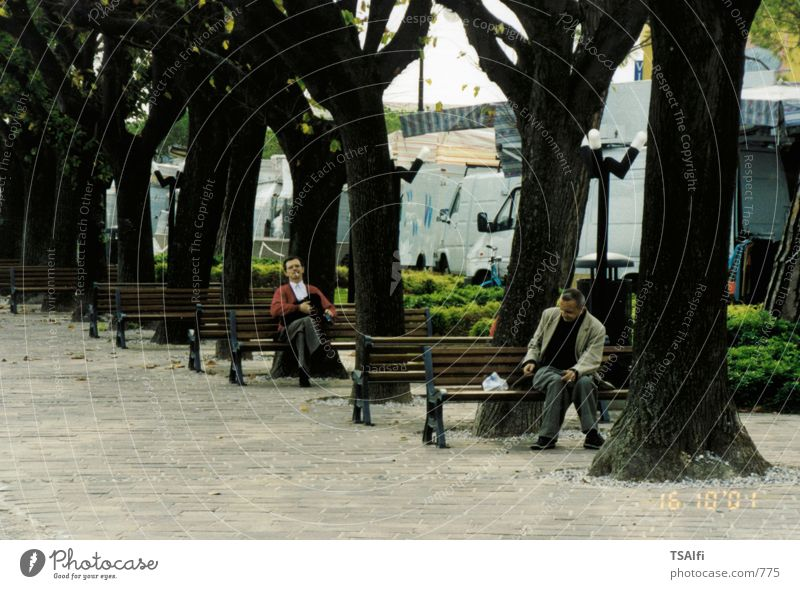 park benches Park bench Tree Human being