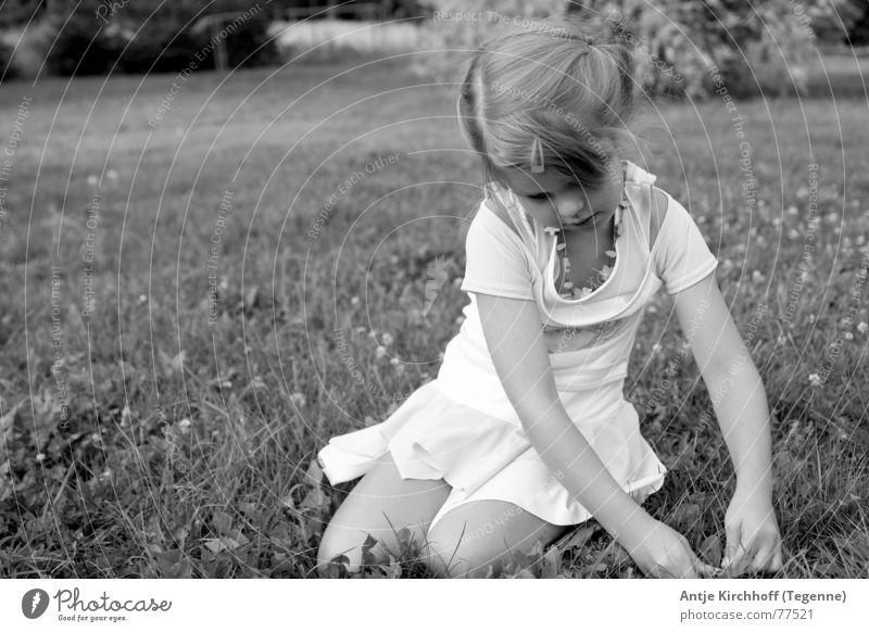 Little Fairy Girl Friendliness Sweet Graceful Kindergarten Child Dreamily Playing Open Portrait photograph Meadow Exterior shot Braids Dress Summer Spring