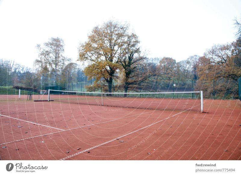 Calm Emotions Autumn Sports Moody Wait Longing Sporting event Net Patient Bad weather Ball sports Sporting Complex Tennis court