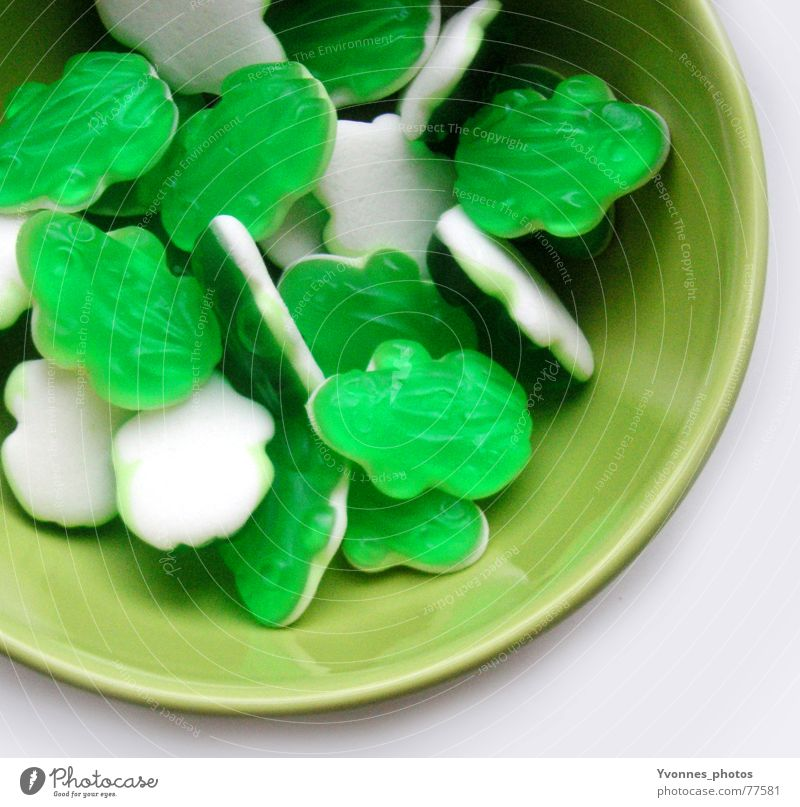 Green Colour Food Nutrition Sweet Good Kitchen Candy Delicious Square Living room Frog Bowl Wine gum Sugar Dentist
