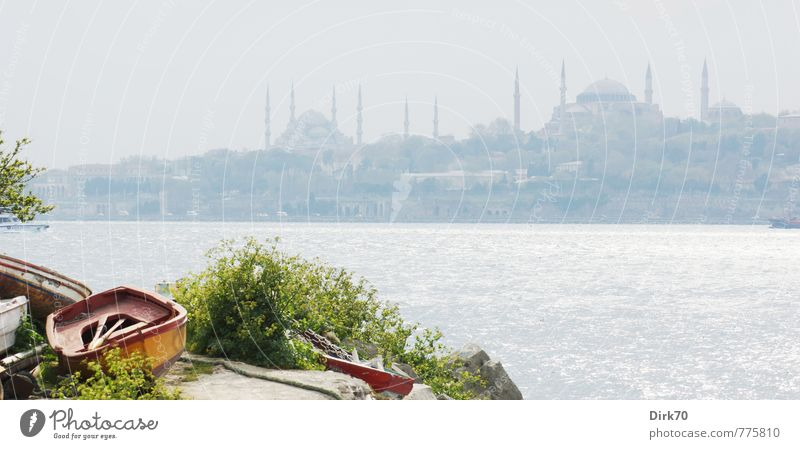 Asian Perspective I Vacation & Travel Tourism City trip Sun Sunlight Beautiful weather Bushes Foliage plant Rock Waves Coast Ocean The Bosphorus Istanbul Turkey