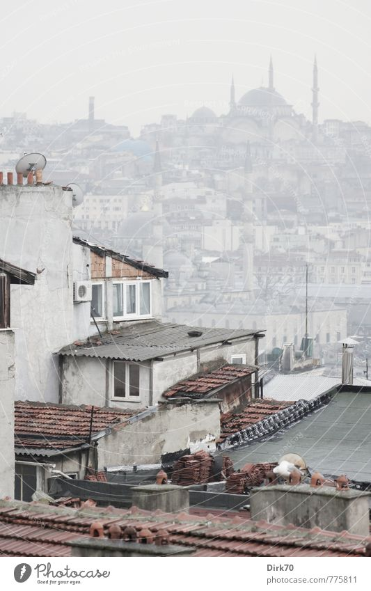 Two sides of the Golden Horn Tourism City trip Spring Bad weather Fog Istanbul Turkey Overpopulated House (Residential Structure) Tower Mosque Minaret