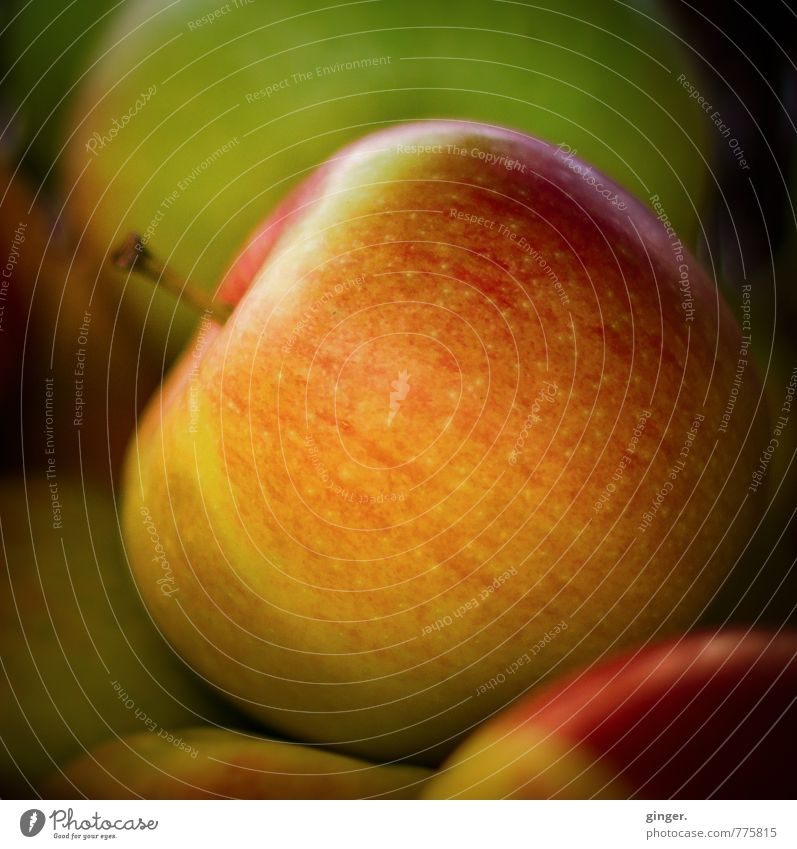 Withstand the seduction... Sign Yellow Green Red Apple Appetite Juicy Delicious Perfect Mature Alluring blown up Presentation Fruit basket Round Sweet