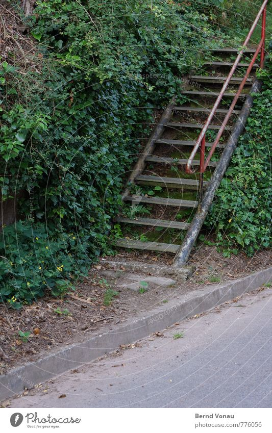 third staircase left Village Wall (barrier) Wall (building) Stairs Street Lanes & trails Old Simple Gloomy Steel Steel construction Banister Iron-pipe Feral