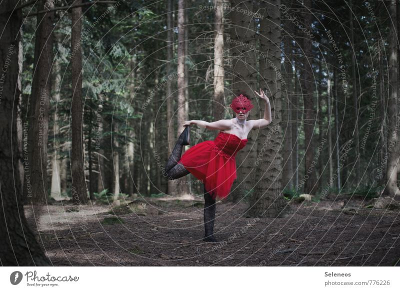 dance alone Carnival Dance Human being Feminine Woman Adults 1 18 - 30 years Youth (Young adults) Dancer Ballet Circus Nature Spring Summer Plant Tree Forest