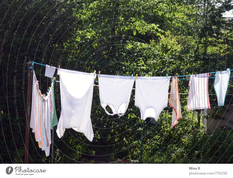 White Summer Sun Garden Living or residing Clothing Wet Clean Cleaning T-shirt Dry Cloth Washing Laundry Underwear Clothesline