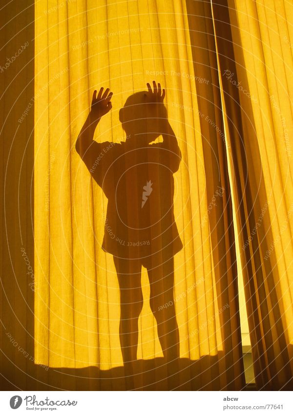 Behind the curtain Curtain Drape Yellow Child Hand Boy (child) Shadow Silhouette