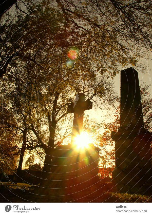 Sun Calm Autumn Death Religion and faith Sadness Think Back Grief Peace Trust Belief Monument Prayer Opinion Retirement