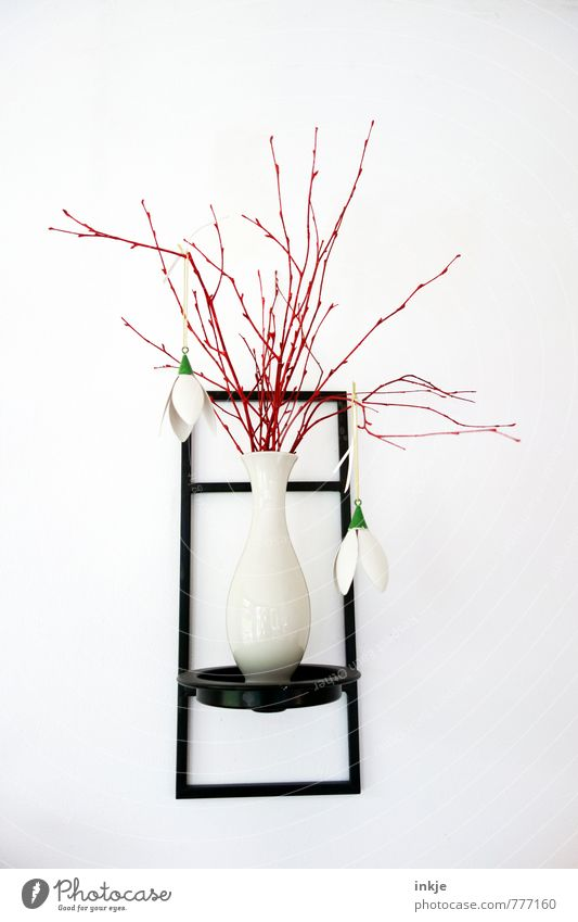 Beautiful White Summer Red Black Spring Lifestyle Living or residing Design Modern Decoration Simple Branch Thin Bouquet Long