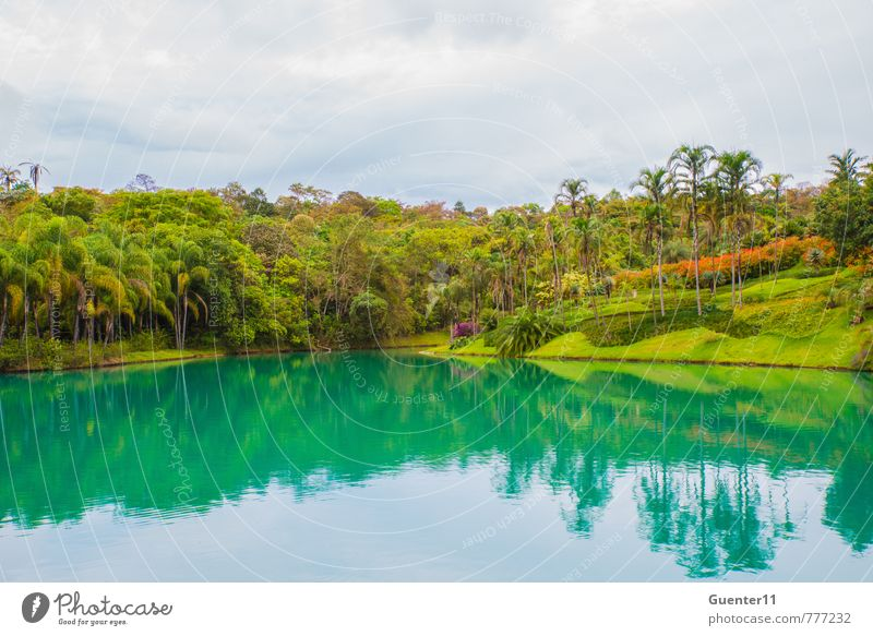 Small lake in Minas Gerais, Brazil Nature Water Summer Landscape Clouds Joy Environment Warmth Friendship Air Park Lakeside Peace Cloudless sky