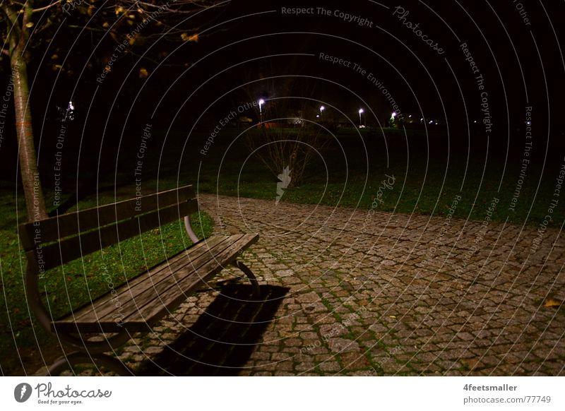 Tree Loneliness Dark Cold Autumn Meadow Lanes & trails Park Empty Bench November Waltershausen