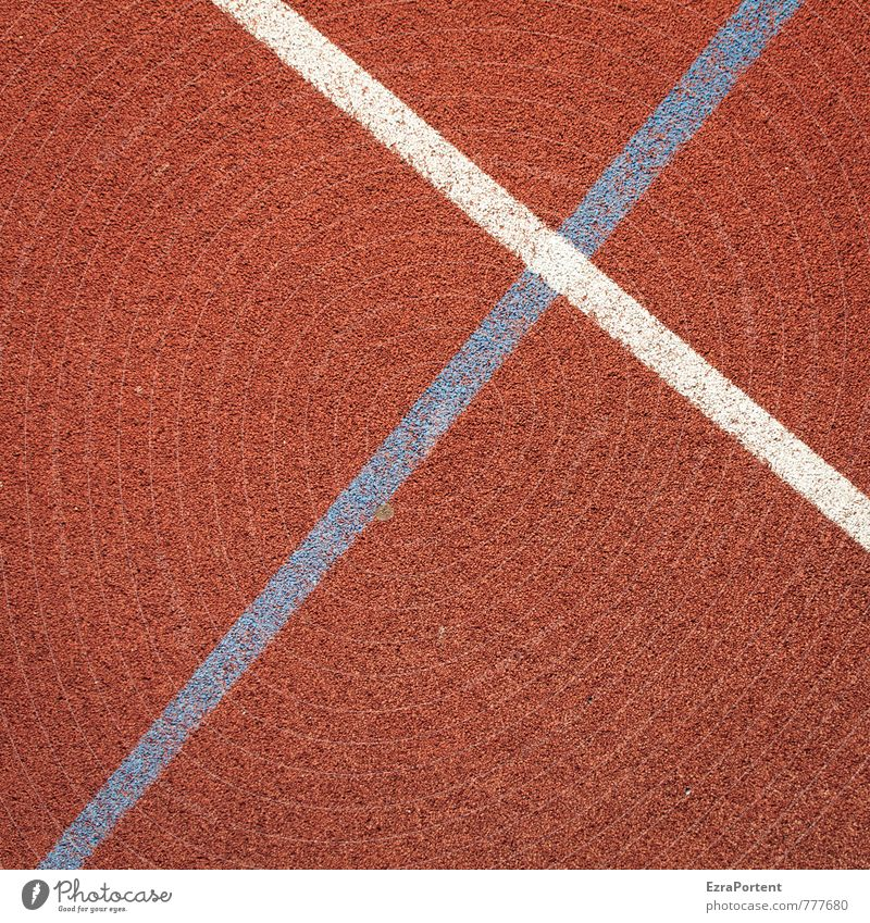 tartan Wellness Leisure and hobbies Playing Sports Fitness Sports Training Track and Field Sporting event Sporting Complex Stadium Plastic Line Esthetic Blue