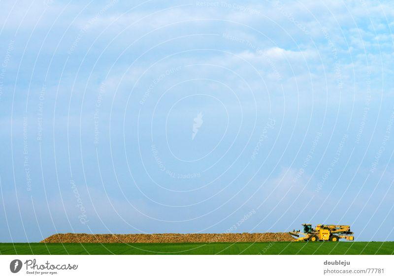 Rübezahl Field Rapes Agriculture Machinery Load Process Autumn Work and employment Arrange Vehicle Automation Sky Harvest