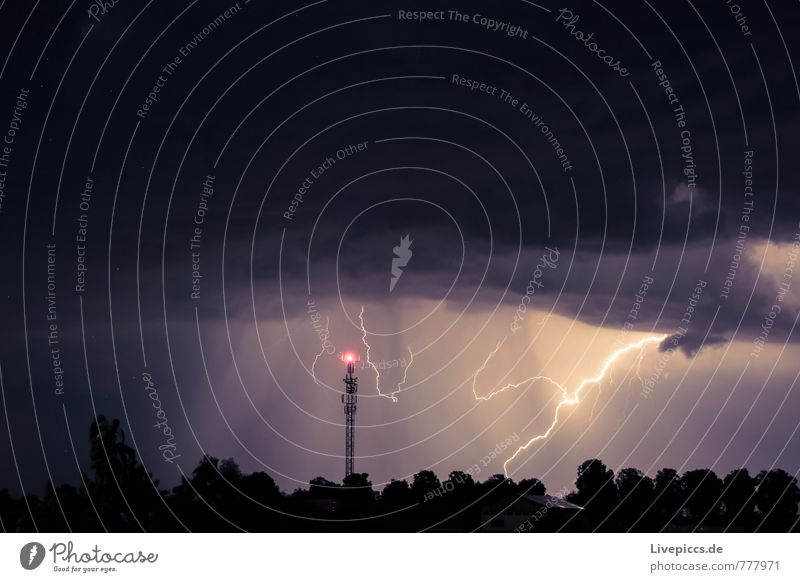...thunderous weather Environment Nature Landscape Elements Sky Clouds Storm clouds Night sky Summer Weather Gale Thunder and lightning Lightning Plant Tree