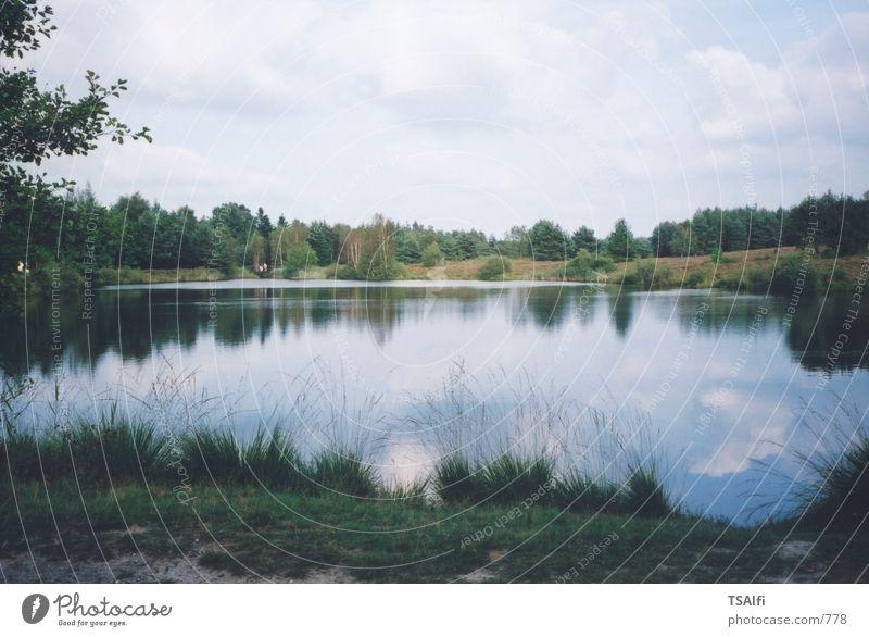 Water Lake Idyll