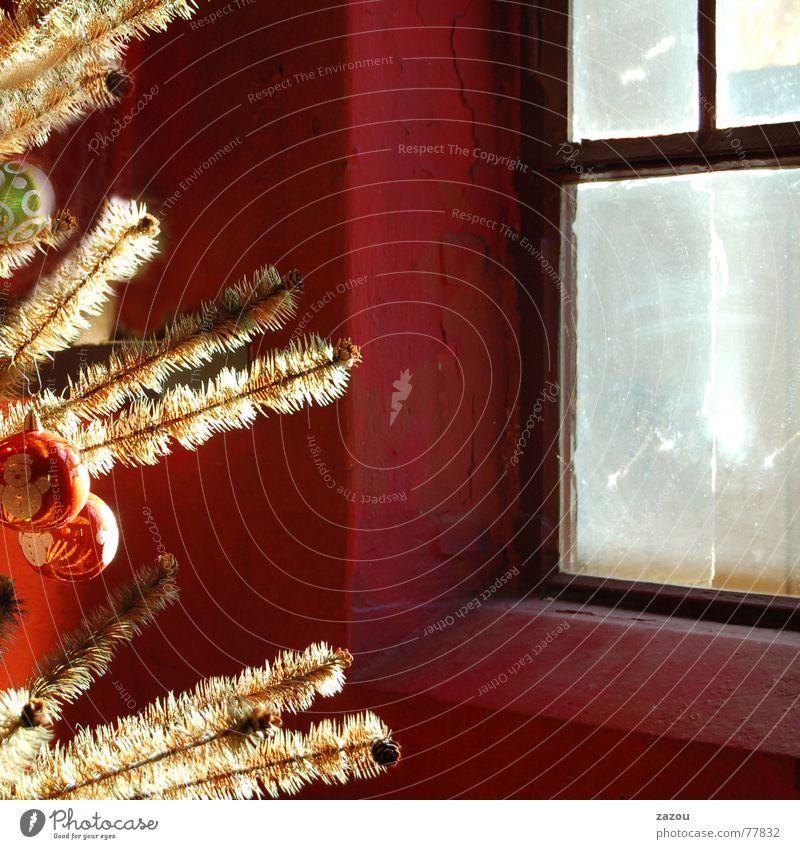 Christmas & Advent Calm Window Dream Religion and faith Feasts & Celebrations Christmas tree Tradition Christmas decoration