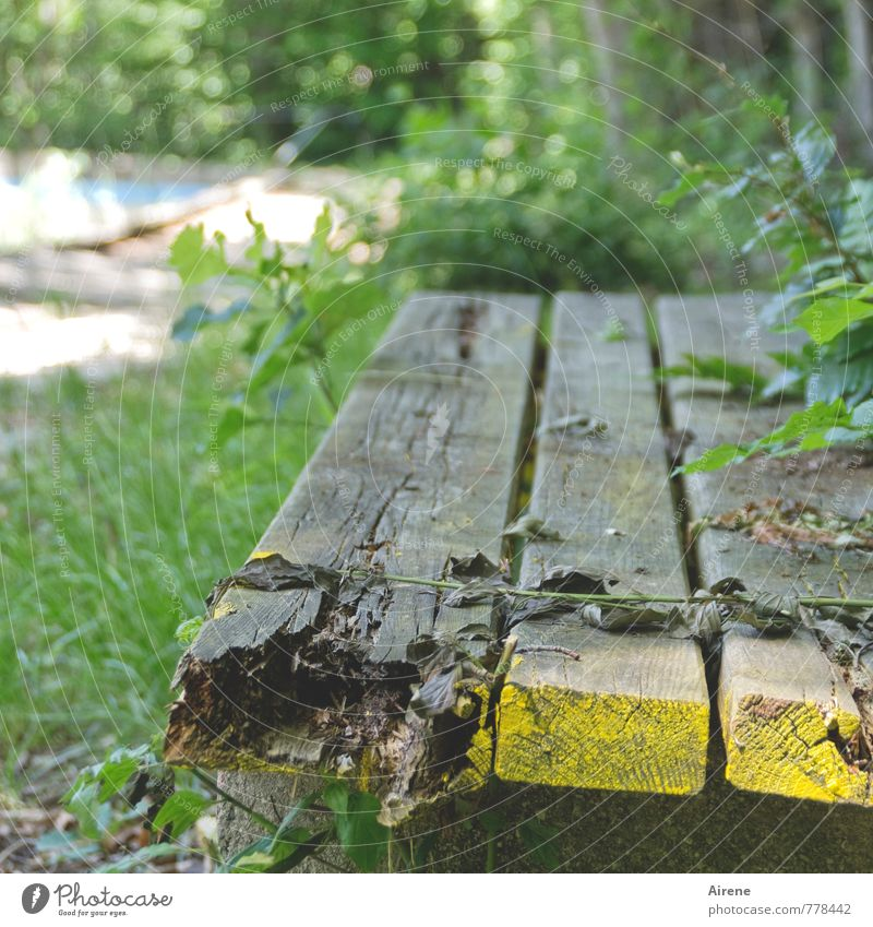 Bench - red Swimming pool Open-air swimming pool Garden bench Wooden bench Park bench Old Broken Yellow Gray Green Senior citizen Crisis Decline Transience