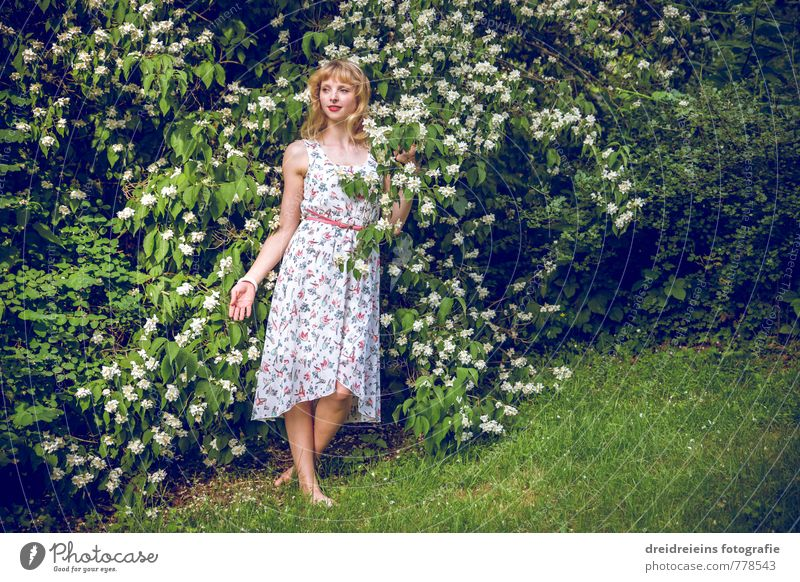 Human being Nature Youth (Young adults) Green Plant Young woman Feminine Blossom Natural Garden Blonde Bushes Stand Esthetic Blossoming Touch