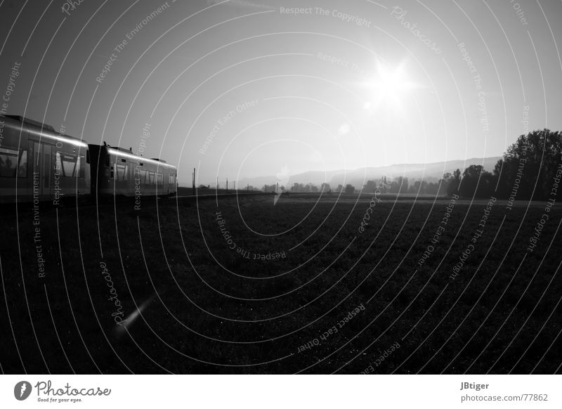 Silent Railroad Train compartment Field Meadow Morning Black & white photo Tree Fog Fresh Calm Ammertal Sun Rope Landscape