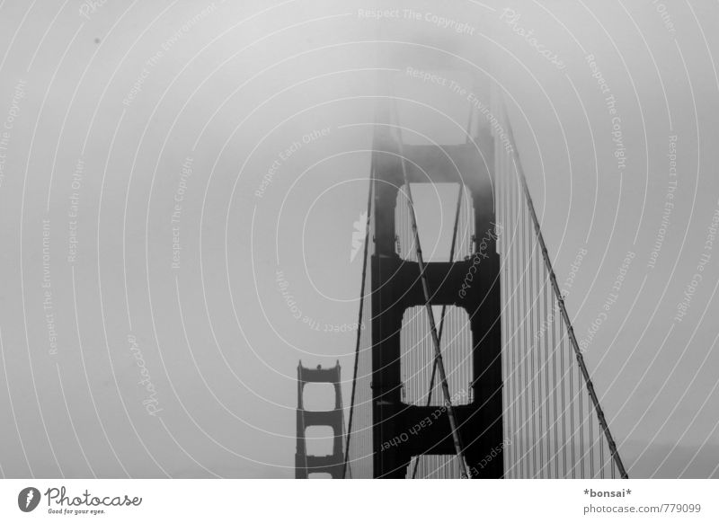 Vacation & Travel City Above Power Fog Design Contentment Large Tall Esthetic Bridge Manmade structures Long Downtown Hang Sightseeing