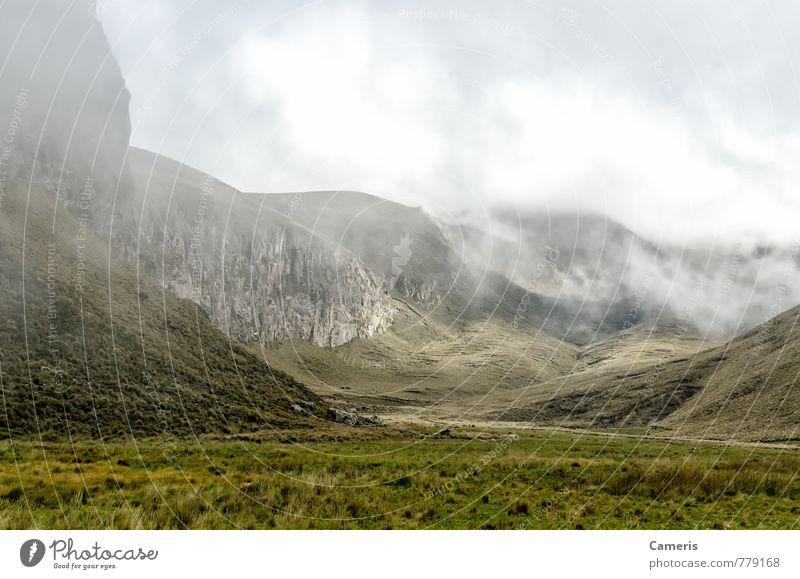 The Andes in Ecuador Nature Vacation & Travel Green Loneliness Landscape Clouds Black Environment Mountain Grass Brown Rock Fog Tourism Bushes Hiking