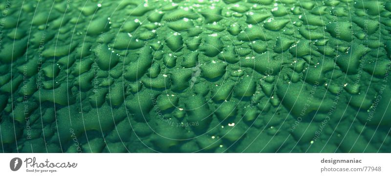Water Green Black Yellow Far-off places Dark Window Gray Landscape Bright Drops of water Wet Damp Dew Handrail