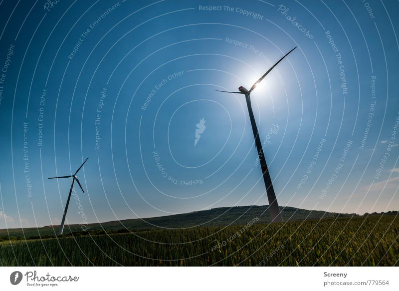 Wind Power Collector #4 Technology Energy industry Renewable energy Wind energy plant Environment Nature Sky Cloudless sky Sun Sunlight Spring Summer Plant